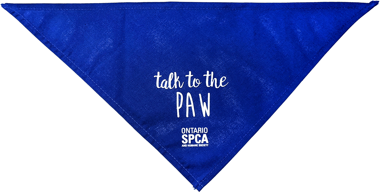 Talk to the Paw - Blue