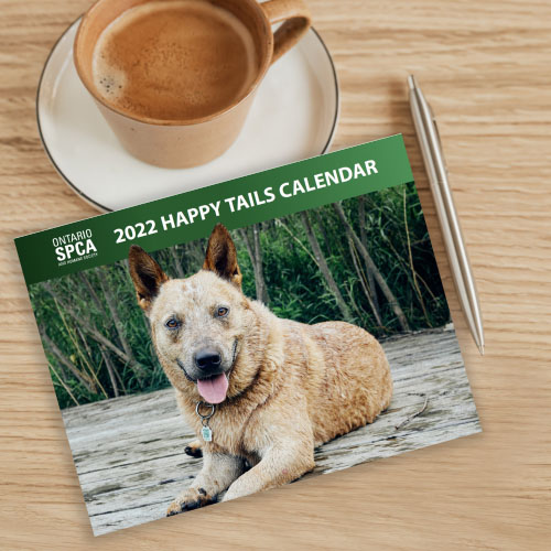 Click here for more information about 2021 Happy Tails Calendar