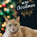 "Click here for more information about 10-pack 2020 ""Meowy Christmas"" Cards"